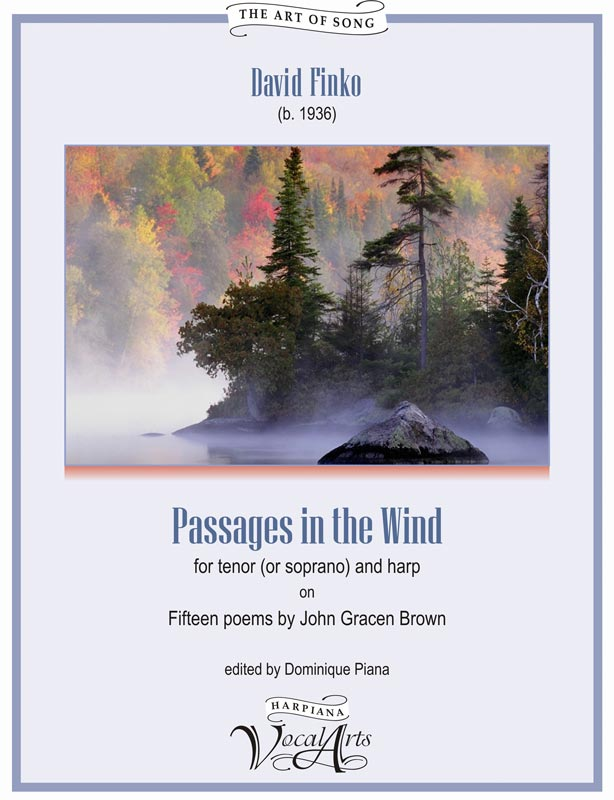Finko - Passages in the wind